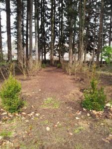 Aménagement du bois de Sainte Anne