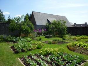 Les carrés de légumes et les fleurs.