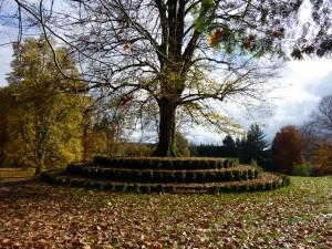 Arboretum château Neuvic D'Ussel Limousin corrèze Parc Jardin remarquable