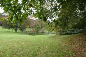 Arboretum du château de Neuvic d'Ussel Lemouzi 1