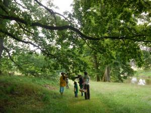 Atelier herbier poétique arboretum Neuvic 2